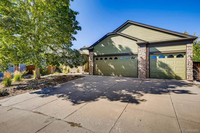 9351 Desert Willow Way, Highlands Ranch, CO 80129 (MLS #3008172) :: Kittle Real Estate
