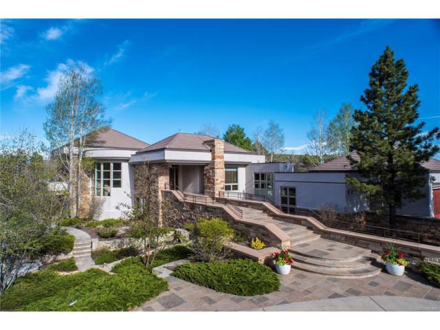 1536 Elk View Road, Larkspur, CO 80118 (MLS #3009934) :: 8z Real Estate