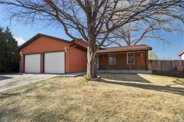 5 Chicory Court, Pueblo, CO 81001 (#3010509) :: House Hunters Colorado