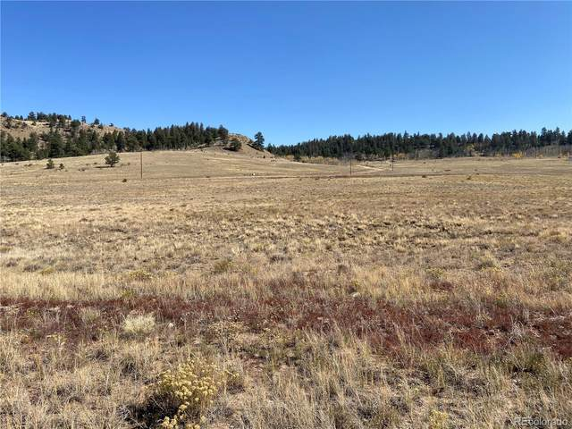 0004 Guipago Trail, Hartsel, CO 80449 (#3011115) :: Hudson Stonegate Team