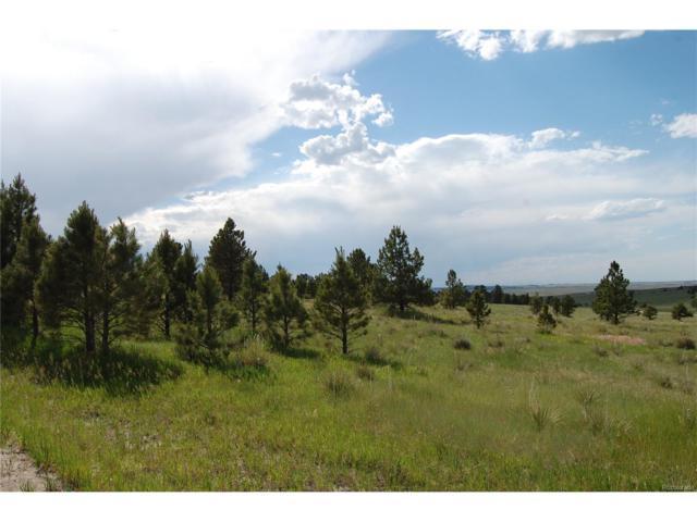 27982 W Broadview Drive, Kiowa, CO 80117 (MLS #3011142) :: 8z Real Estate