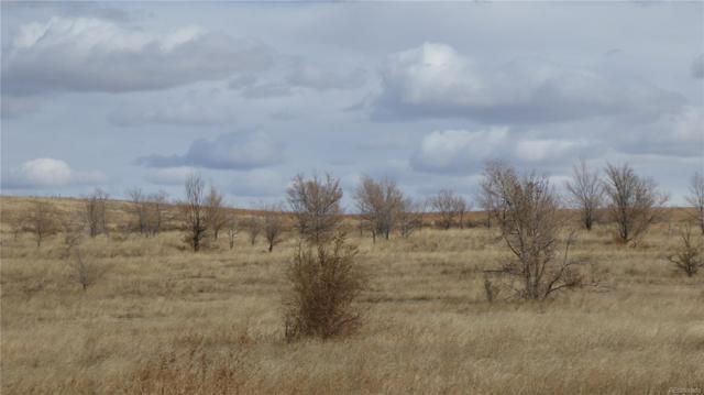 Cr 217, Deer Trail, CO 80105 (#3011201) :: The Peak Properties Group