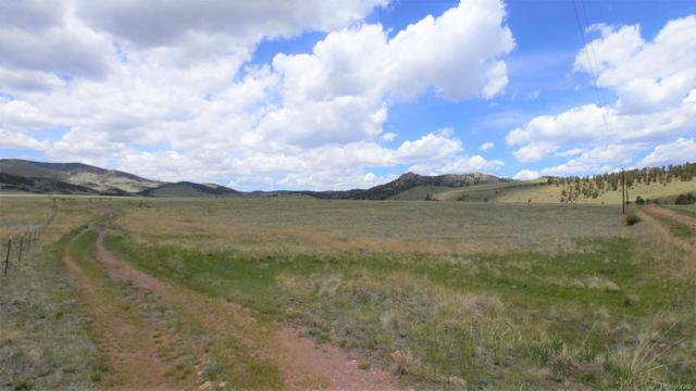 95 Wrights Lane, Guffey, CO 80820 (#3018096) :: Bring Home Denver with Keller Williams Downtown Realty LLC