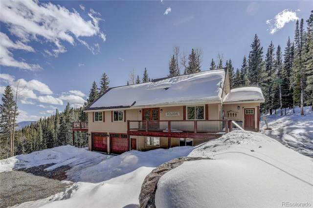 1176 Squaw Mtn Trail, Idaho Springs, CO 80452 (MLS #3018622) :: 8z Real Estate