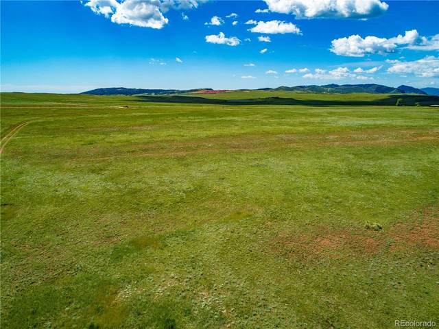 0 County Road 80, Livermore, CO 80536 (MLS #3022754) :: Kittle Real Estate