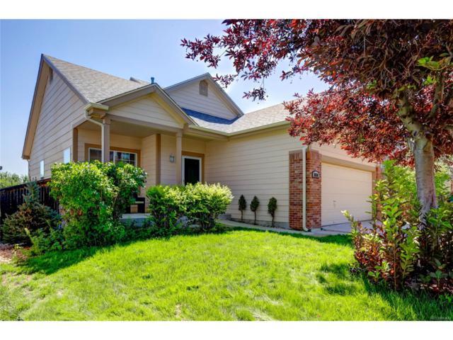 8830 Jackdaw Street, Littleton, CO 80126 (MLS #3024042) :: 8z Real Estate