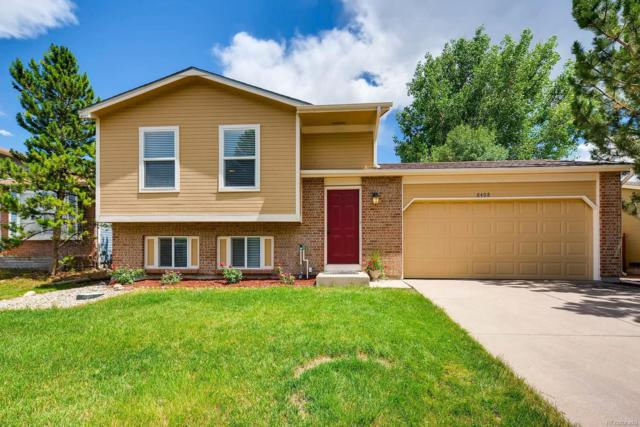 8408 Wild Alfalfa Place, Parker, CO 80134 (#3024938) :: The HomeSmiths Team - Keller Williams