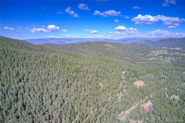 13250 Powhatan Trail, Conifer, CO 80433 (#3026916) :: The HomeSmiths Team - Keller Williams