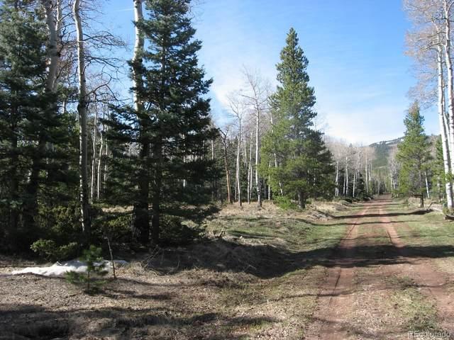 1310 Claytor, Fort Garland, CO 81133 (MLS #3028225) :: 8z Real Estate