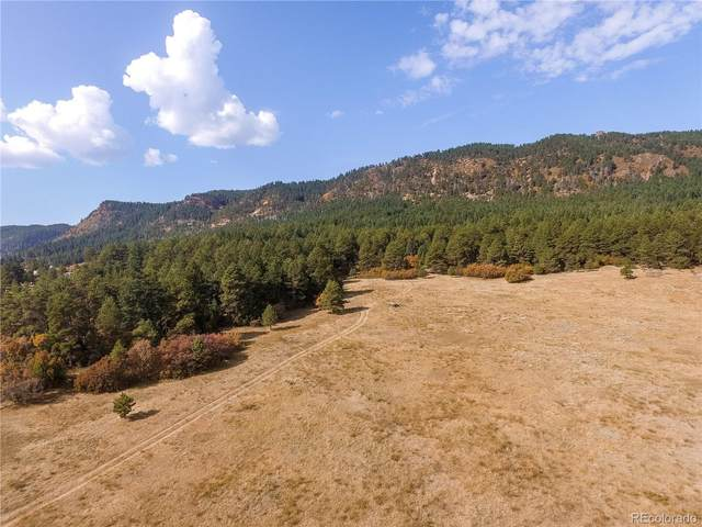 13147A Perry Park Road, Larkspur, CO 80118 (MLS #3029592) :: 8z Real Estate