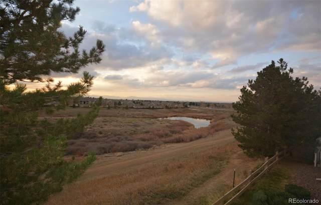8415 Pebble Creek Way #204, Highlands Ranch, CO 80126 (#3033826) :: Wisdom Real Estate