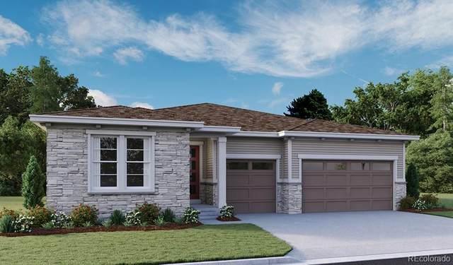 1504 Gentle Rain Drive, Castle Rock, CO 80109 (MLS #3034746) :: 8z Real Estate