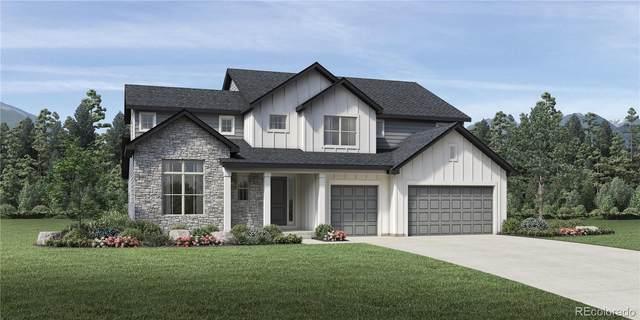 3621 Salud Lane, Castle Rock, CO 80108 (#3034826) :: The Dixon Group