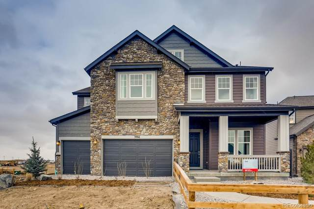 3025 Blithe Point, Castle Rock, CO 80108 (#3035795) :: Own-Sweethome Team