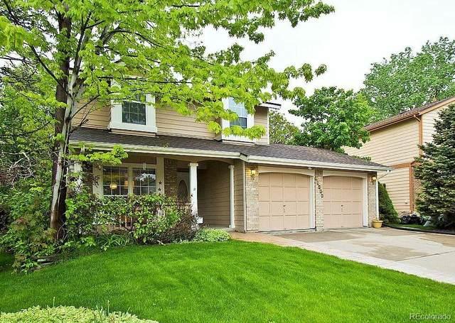 11022 Trailrider Pass, Littleton, CO 80127 (#3037141) :: Wisdom Real Estate