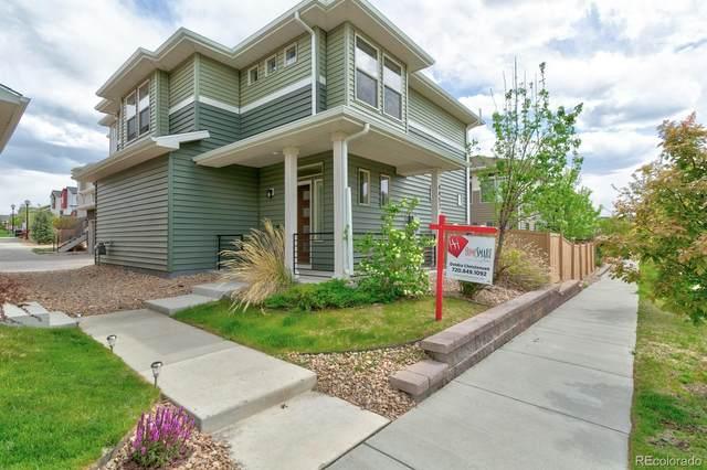 4452 Elegant Street, Castle Rock, CO 80109 (#3037350) :: The Peak Properties Group
