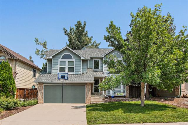 6315 Collegiate Drive, Highlands Ranch, CO 80130 (#3038800) :: The Heyl Group at Keller Williams