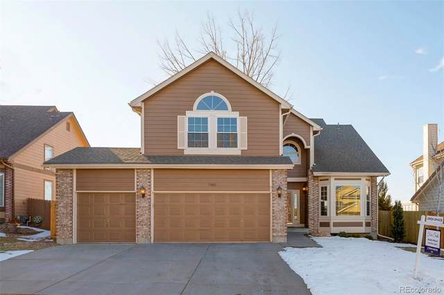 7382 Powderhorn Drive, Lone Tree, CO 80124 (#3039241) :: The Peak Properties Group
