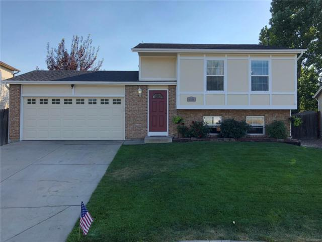 8531 Rabbitbrush Way, Parker, CO 80134 (#3044539) :: My Home Team