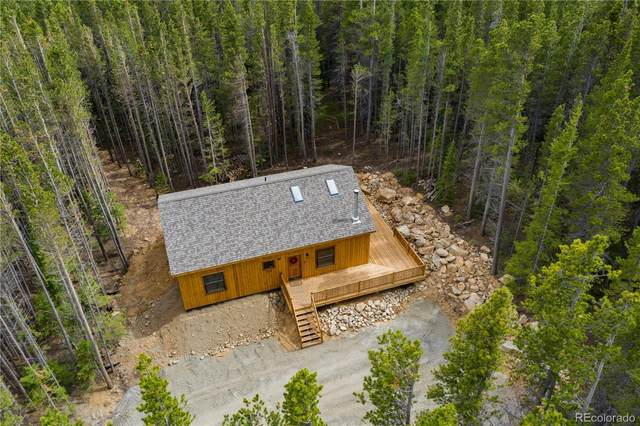 223 Beaver Road, Idaho Springs, CO 80452 (#3045876) :: The DeGrood Team