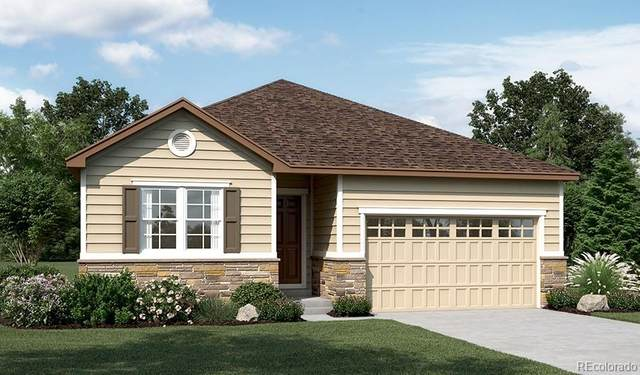 630 Daylily Street, Brighton, CO 80601 (#3048738) :: The DeGrood Team