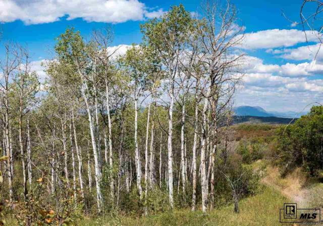 Bella Vista Circle, Steamboat Springs, CO 80487 (#3049831) :: The Healey Group