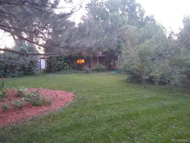 977 S Ames Street, Lakewood, CO 80226 (#3055943) :: Own-Sweethome Team