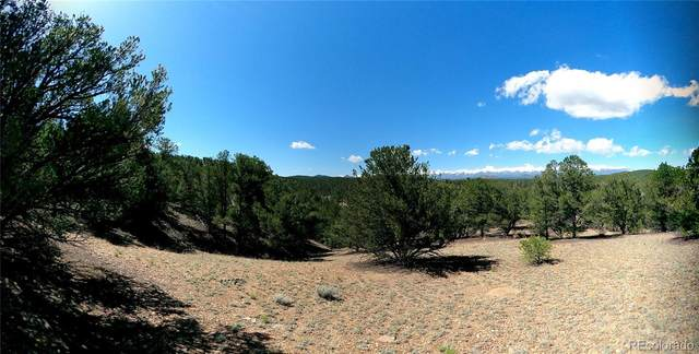 462 Redtail Trail, Texas Creek, CO 81223 (MLS #3061193) :: Clare Day with Keller Williams Advantage Realty LLC
