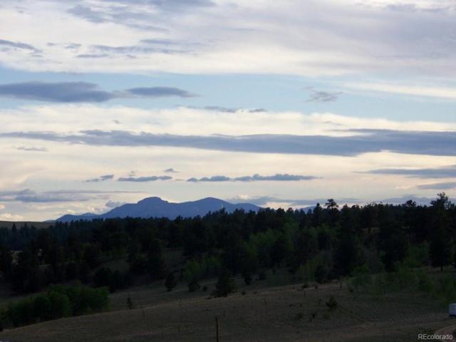 321 Buckskin Way, Como, CO 80432 (MLS #3061250) :: 8z Real Estate