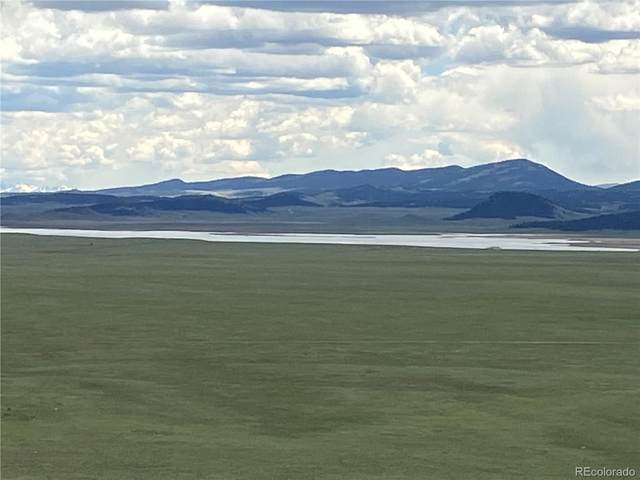 001 Bare Trail, Hartsel, CO 80449 (MLS #3066293) :: Bliss Realty Group