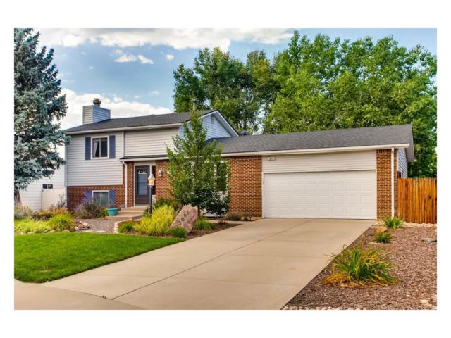 13085 W Chenango Avenue, Morrison, CO 80465 (MLS #3067498) :: 8z Real Estate