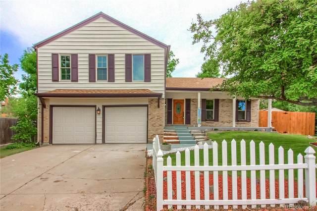 12194 W Saratoga Avenue, Morrison, CO 80465 (MLS #3070564) :: 8z Real Estate
