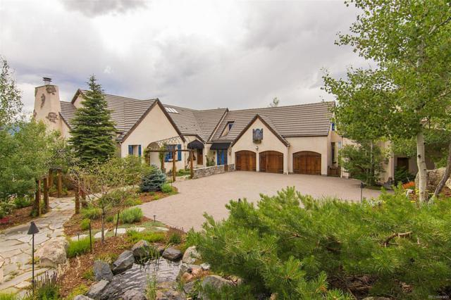 5074 S Perry Park Road, Sedalia, CO 80135 (#3071688) :: The Galo Garrido Group
