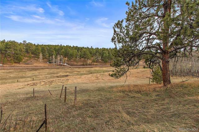 5614 S Hatch Drive S, Evergreen, CO 80439 (#3072575) :: Mile High Luxury Real Estate