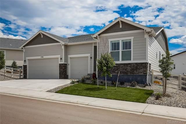 2788 Villageview Lane, Castle Rock, CO 80104 (#3078840) :: Wisdom Real Estate