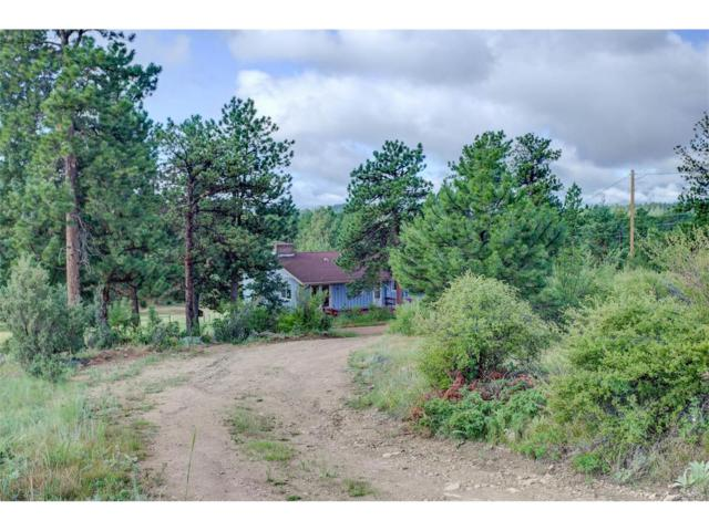 33963 Iroquois Trail, Pine, CO 80470 (MLS #3079916) :: 8z Real Estate