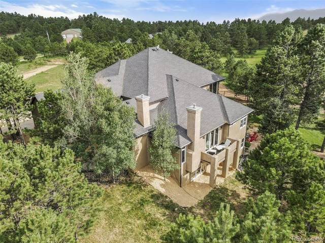 2595 County Line Road, Monument, CO 80132 (#3080024) :: Re/Max Structure