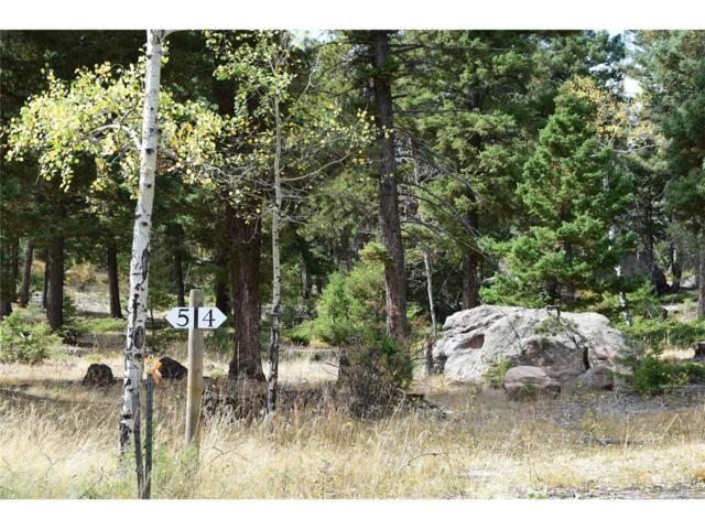 24143 Peak Drive, Conifer, CO 80433 (#3081370) :: The DeGrood Team