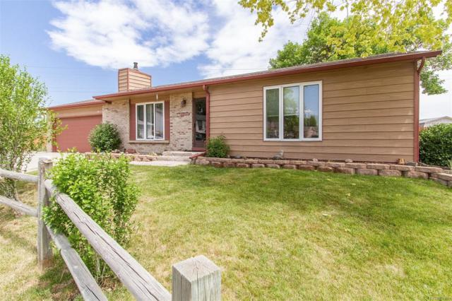 11172 Hudson Place, Thornton, CO 80233 (#3082803) :: Wisdom Real Estate