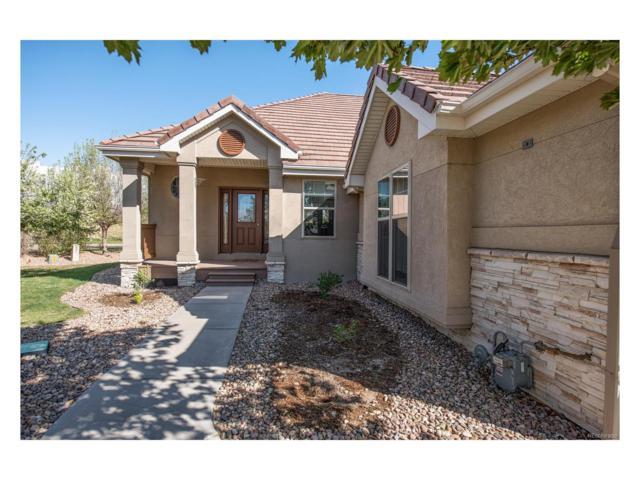 2060 Cedarwood Place, Erie, CO 80516 (MLS #3084401) :: 8z Real Estate