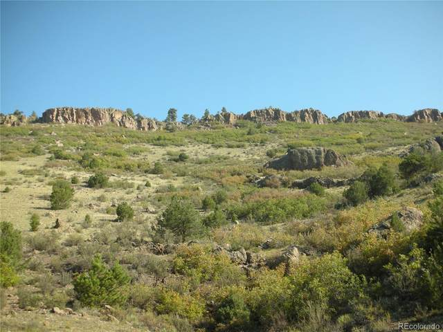 S Tallahassee Trail, Canon City, CO 81212 (#3085015) :: The DeGrood Team