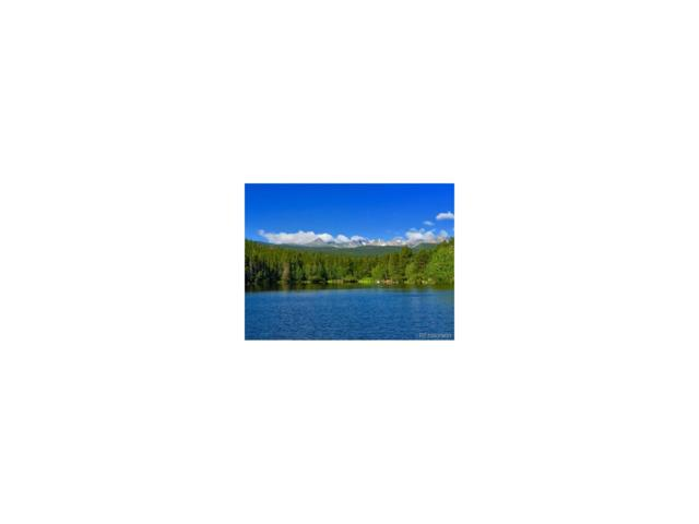 0 Pine Cone Circle, Ward, CO 80481 (MLS #3092277) :: 8z Real Estate