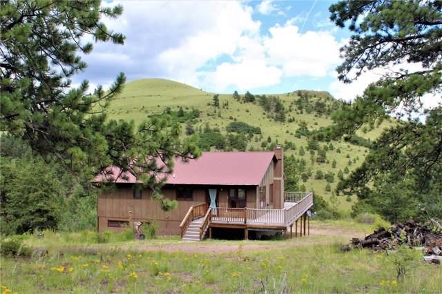 257 Antelope Trail, Cotopaxi, CO 81223 (MLS #3095461) :: 8z Real Estate