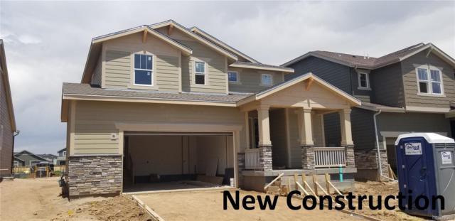 2920 Crusader Street, Fort Collins, CO 80524 (#3095543) :: milehimodern
