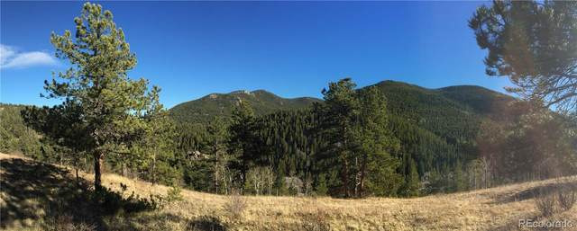 1077 Crawford Gulch Road, Golden, CO 80403 (MLS #3097234) :: Bliss Realty Group