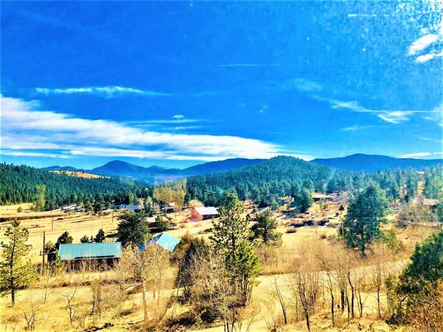 807 Rim Rock Road, Bailey, CO 80421 (#3103077) :: Venterra Real Estate LLC