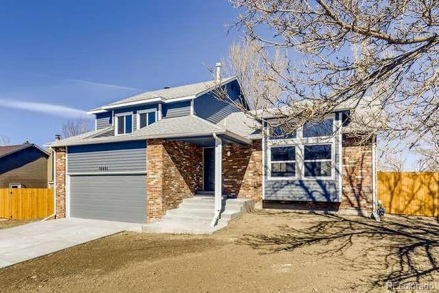 10491 Hobbit Lane, Westminster, CO 80031 (#3112969) :: Realty ONE Group Five Star
