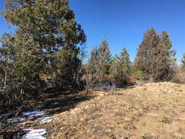 Tbd, Canon City, CO 81212 (MLS #3119272) :: 8z Real Estate
