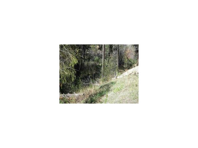 Wild Wood Road, Cascade, CO 80809 (MLS #3119665) :: 8z Real Estate