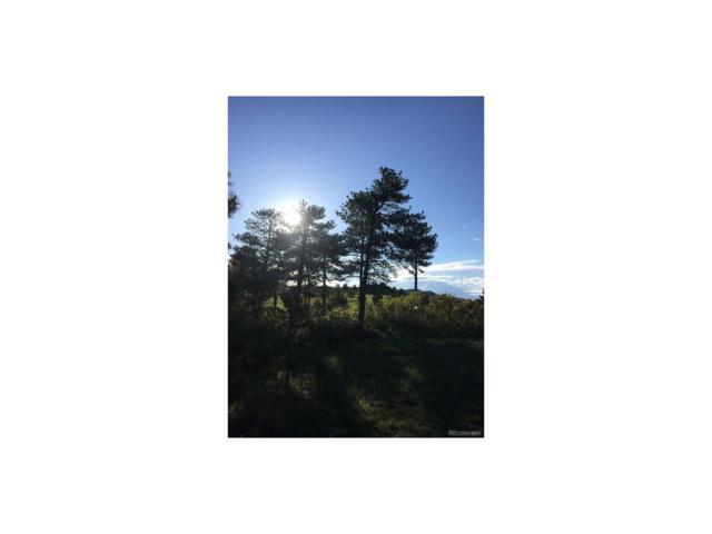1267 Elk View Road, Larkspur, CO 80118 (MLS #3123172) :: 8z Real Estate